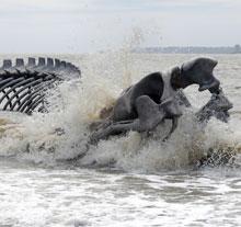 Oeuvre Serpent d'Océan de Huang Yong Ping